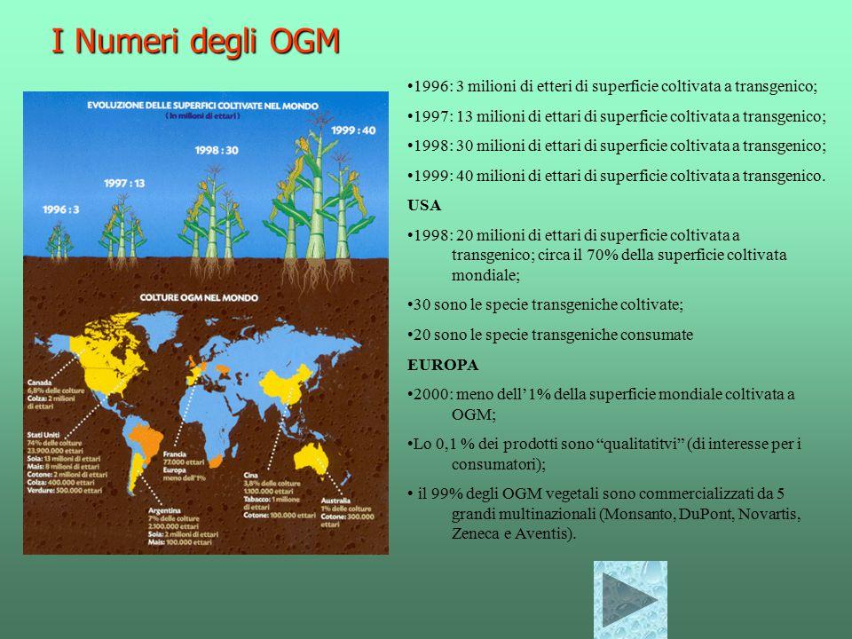 I Numeri degli OGM 1996: 3 milioni di etteri di superficie coltivata a transgenico;