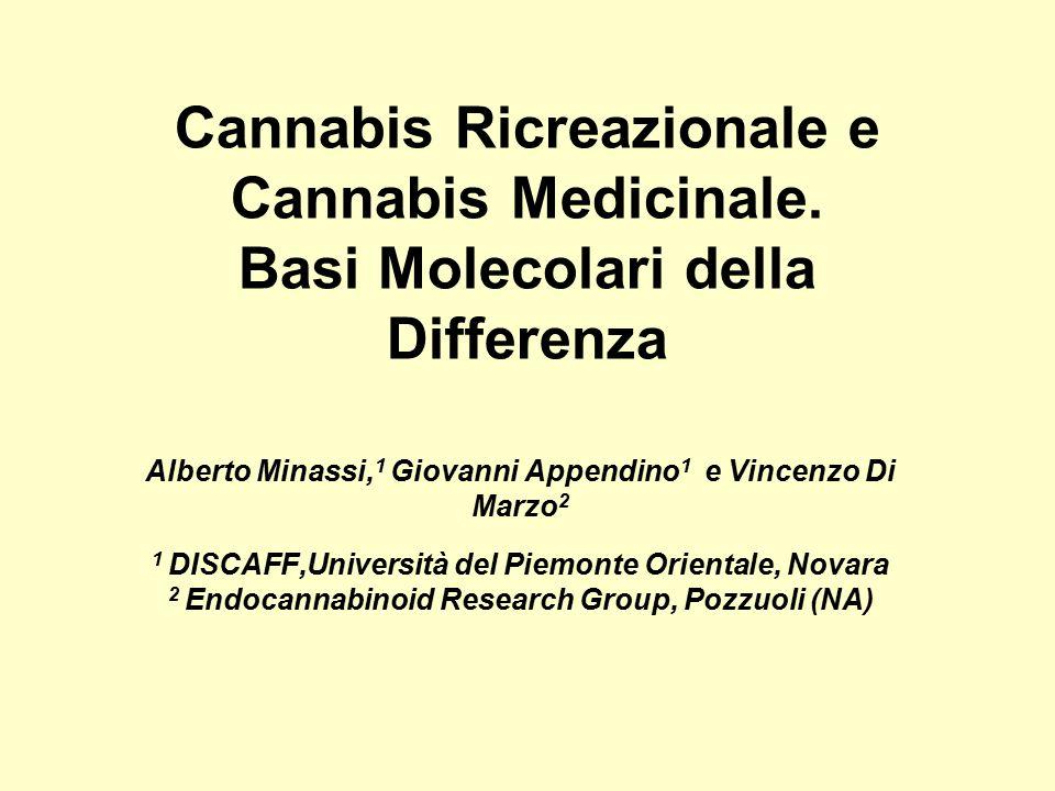 Cannabis Ricreazionale e Cannabis Medicinale