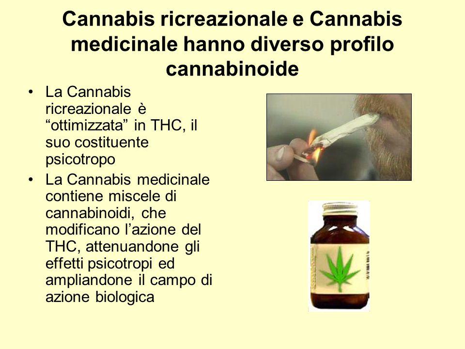 Cannabis ricreazionale e Cannabis medicinale hanno diverso profilo cannabinoide