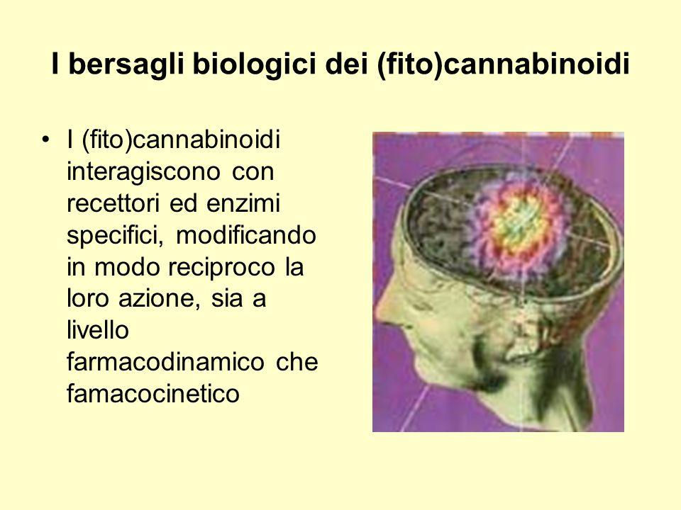 I bersagli biologici dei (fito)cannabinoidi