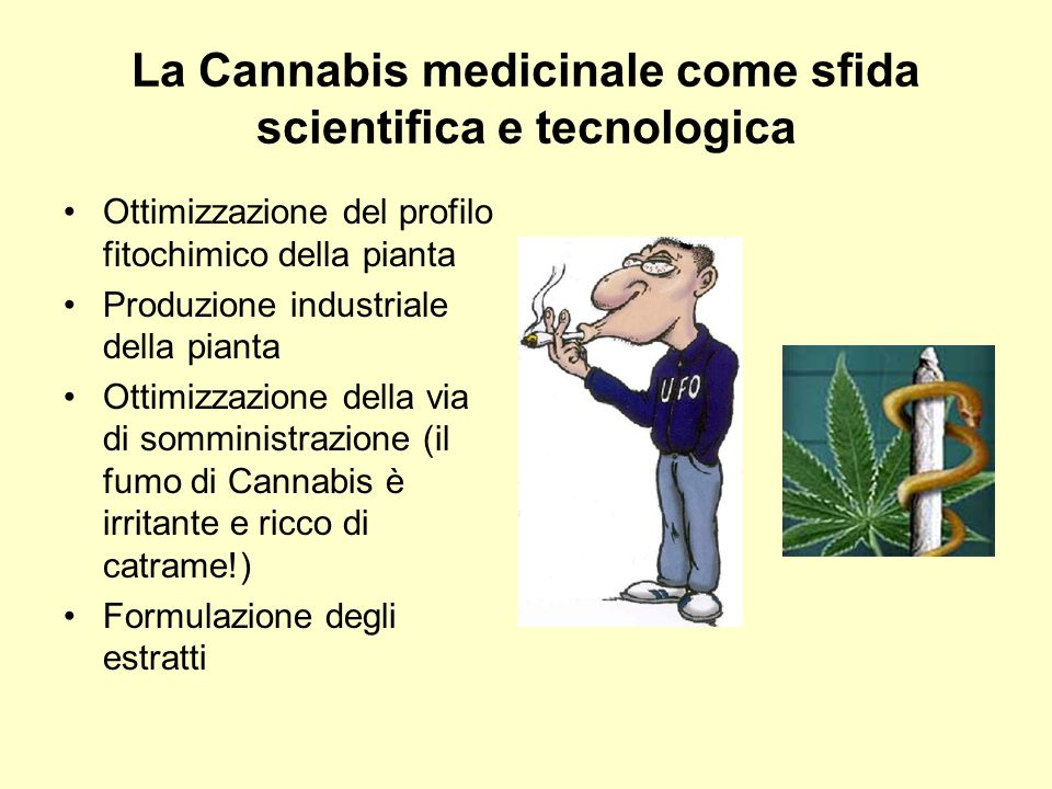 La Cannabis medicinale come sfida scientifica e tecnologica
