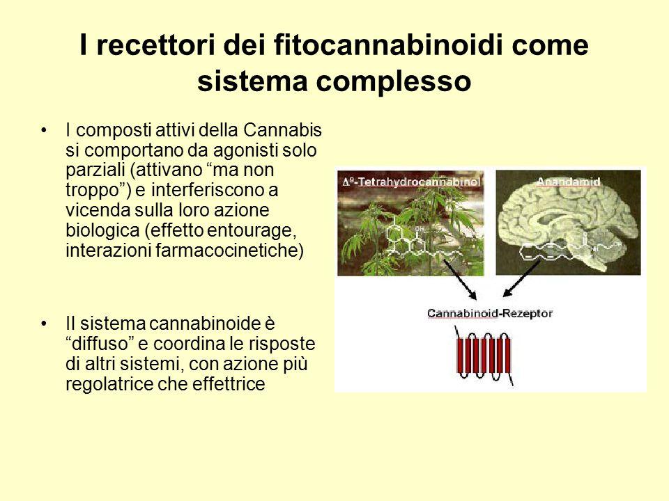 I recettori dei fitocannabinoidi come sistema complesso