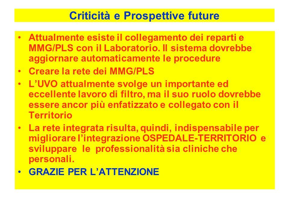 Criticità e Prospettive future