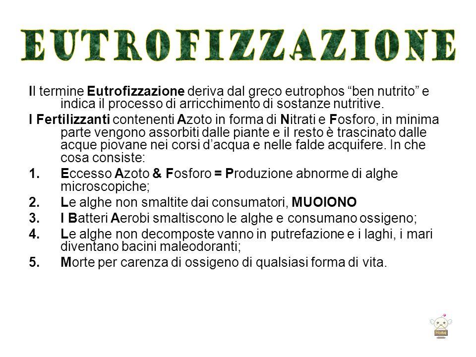 EUTROFIZZAZIONE Il termine Eutrofizzazione deriva dal greco eutrophos ben nutrito e indica il processo di arricchimento di sostanze nutritive.