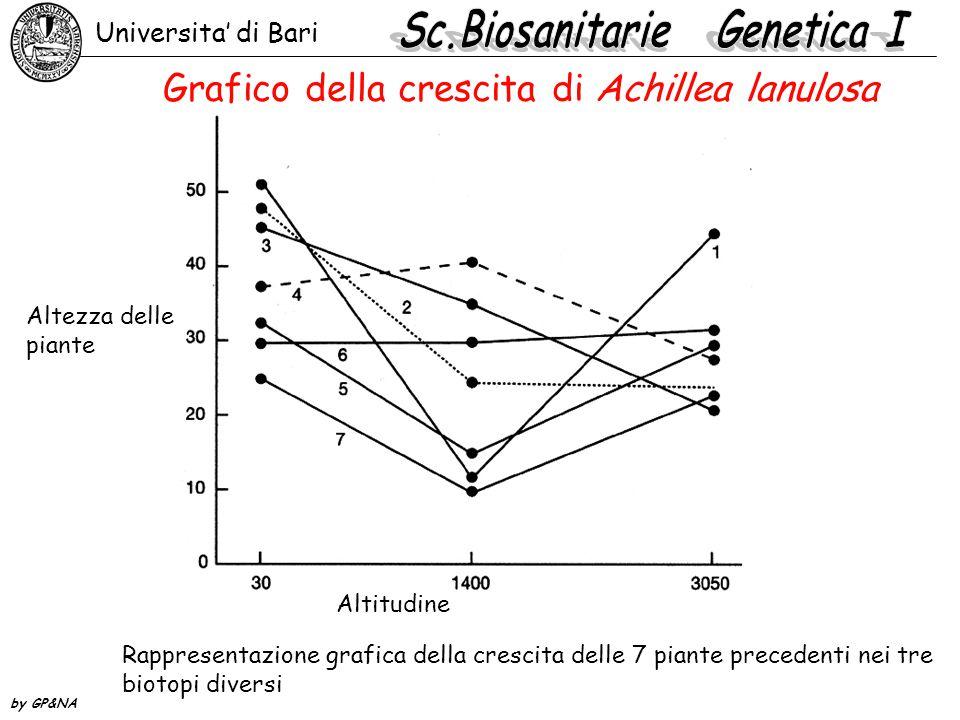 Grafico della crescita di Achillea lanulosa