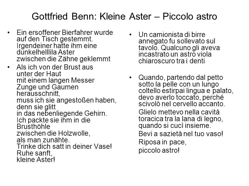 Gottfried Benn: Kleine Aster – Piccolo astro
