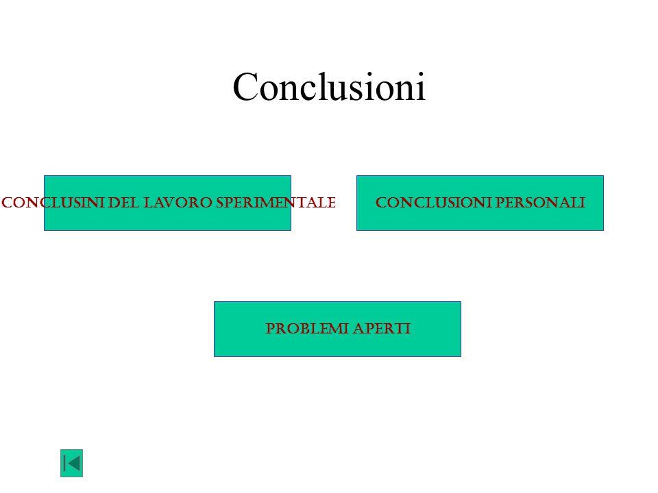 Conclusini del lavoro sperimentale Conclusioni personali
