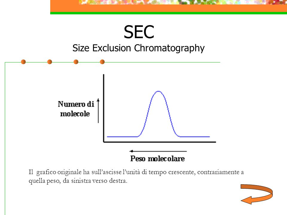 SEC Size Exclusion Chromatography