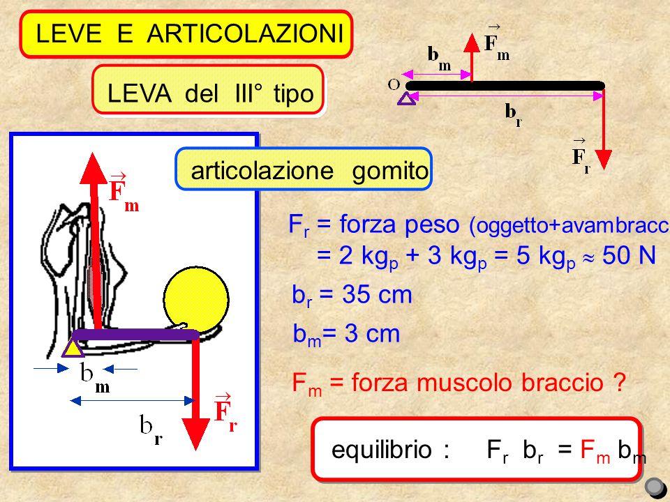 LEVE E ARTICOLAZIONI equilibrio : Fr br = Fm bm. reazione vincolare dita: 5 kgp 35 cm = Fm 3 cm.
