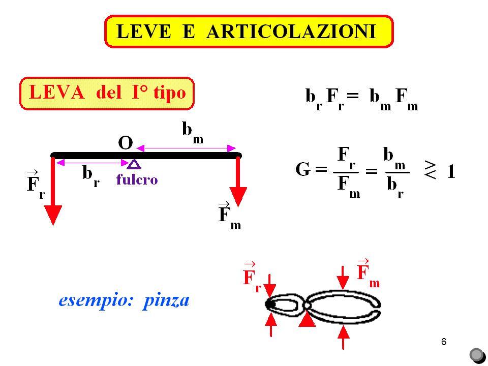 LEVE E ARTICOLAZIONI LEVA del I° tipo. vertebra cervicale. R = baricentro testa. bm = 2 cm.