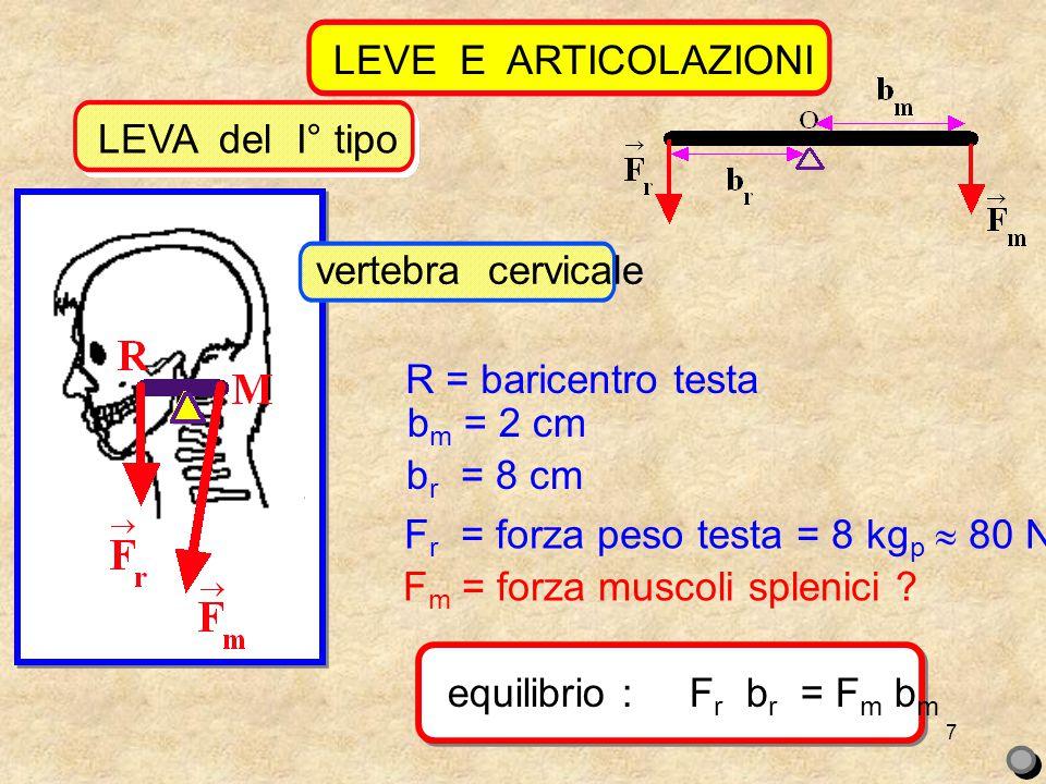 LEVE E ARTICOLAZIONI equilibrio : Fr br = Fm bm. 8 kgp 8 cm = Fm 2 cm. Fm = 32 kgp  320 N.