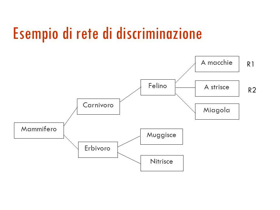 Esempio di rete di discriminazione