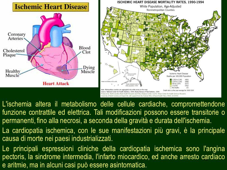L ischemia altera il metabolismo delle cellule cardiache, compromettendone funzione contrattile ed elettrica. Tali modificazioni possono essere transitorie o permanenti, fino alla necrosi, a seconda della gravità e durata dell ischemia.