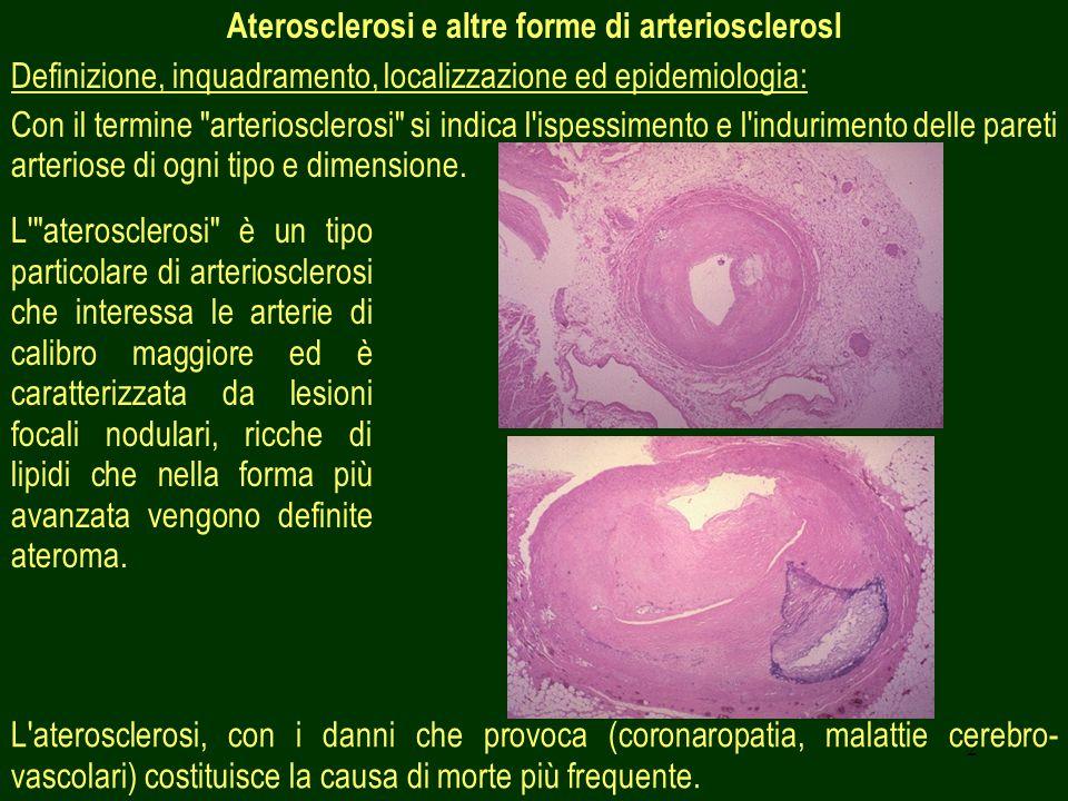 Aterosclerosi e altre forme di arteriosclerosl