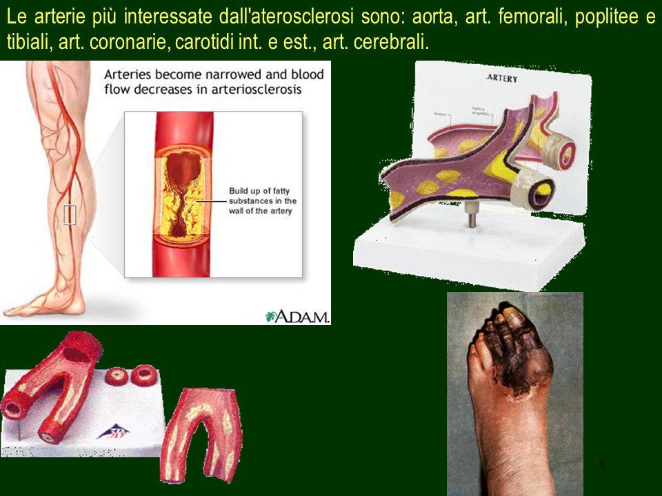 Le arterie più interessate dall aterosclerosi sono: aorta, art