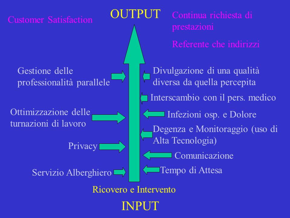 OUTPUT INPUT Continua richiesta di prestazioni Customer Satisfaction