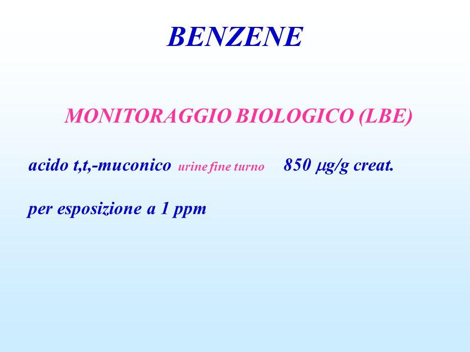 MONITORAGGIO BIOLOGICO (LBE)