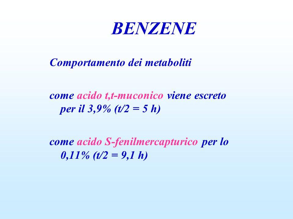 BENZENE Comportamento dei metaboliti