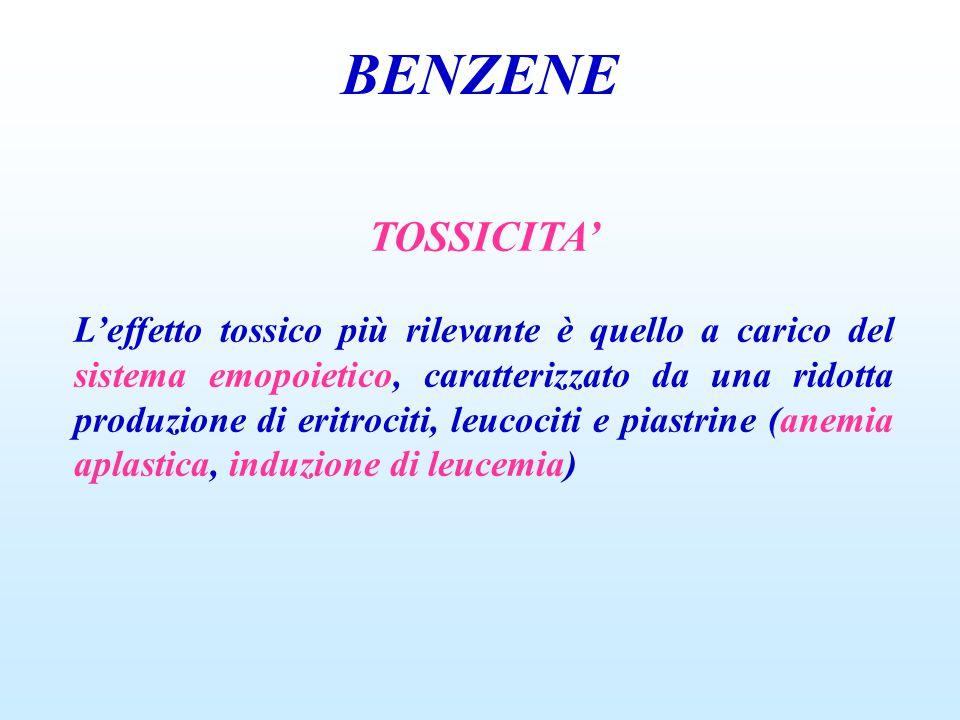 BENZENE TOSSICITA'