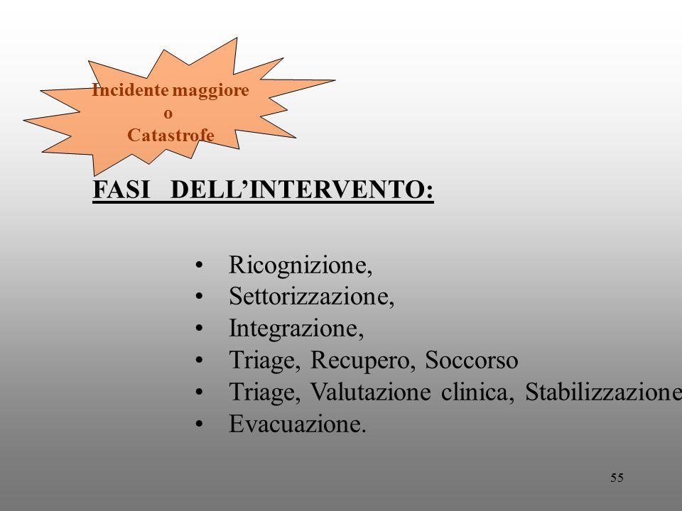 FASI DELL'INTERVENTO: Ricognizione, Settorizzazione, Integrazione,