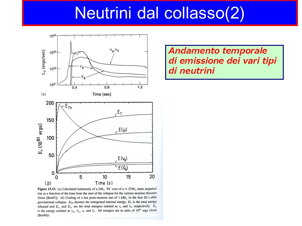 Neutrini dal collasso(2)