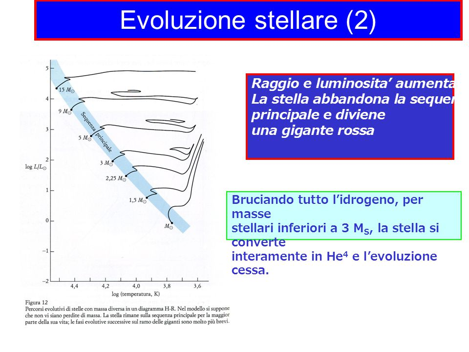 Evoluzione stellare (2)