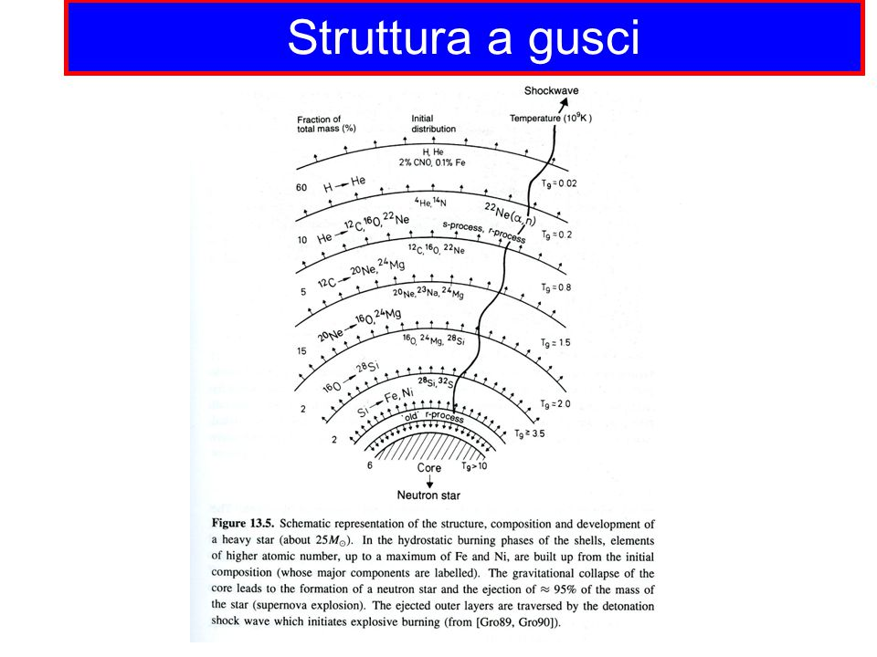 Struttura a gusci