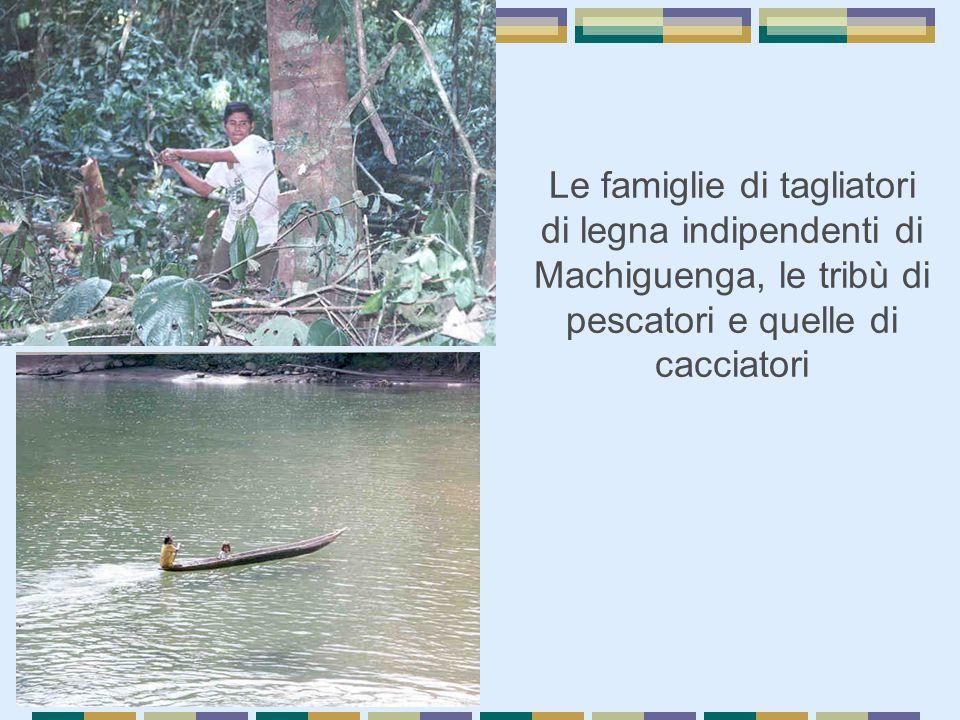 Le famiglie di tagliatori di legna indipendenti di Machiguenga, le tribù di pescatori e quelle di cacciatori