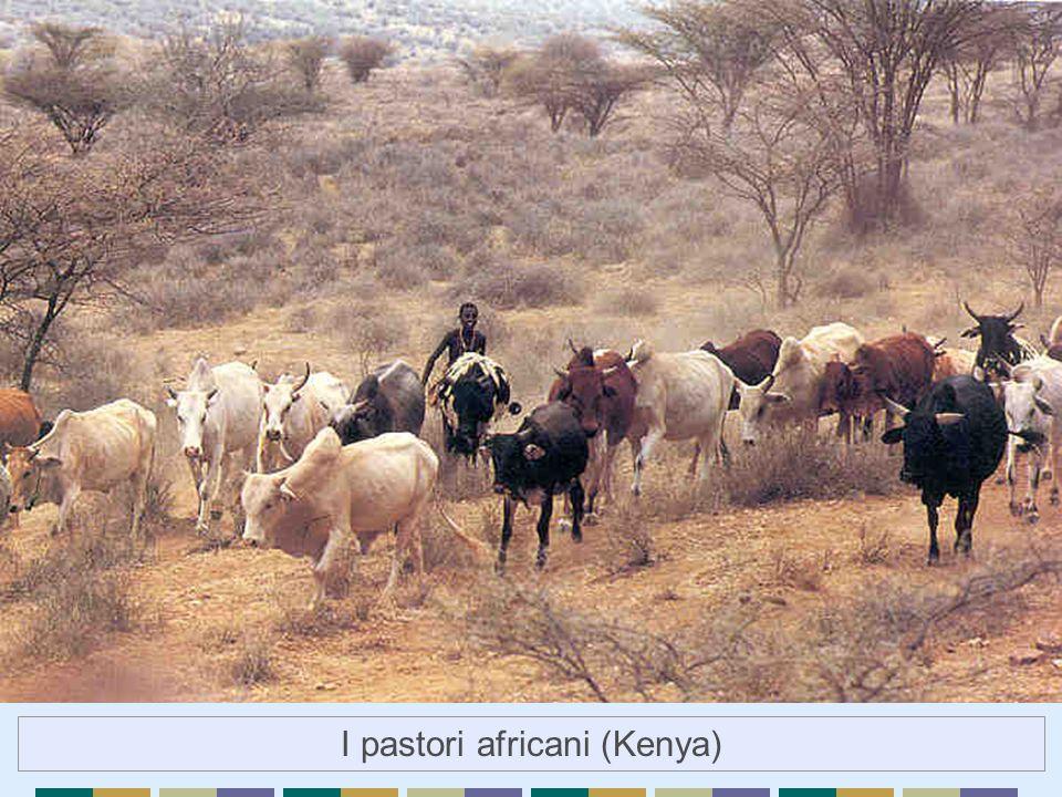 I pastori africani (Kenya)