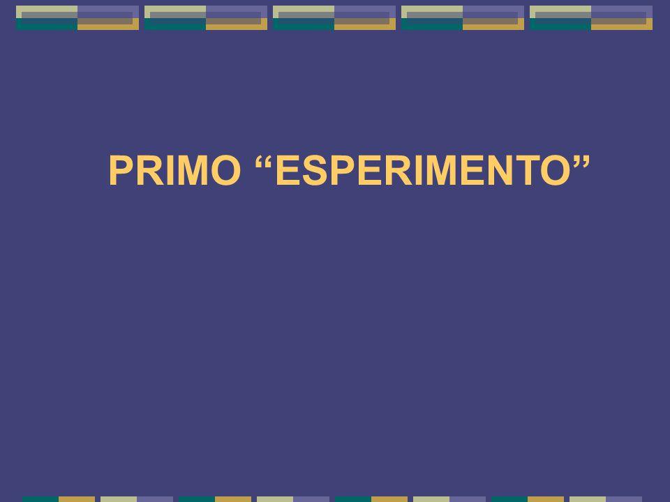 PRIMO ESPERIMENTO 7