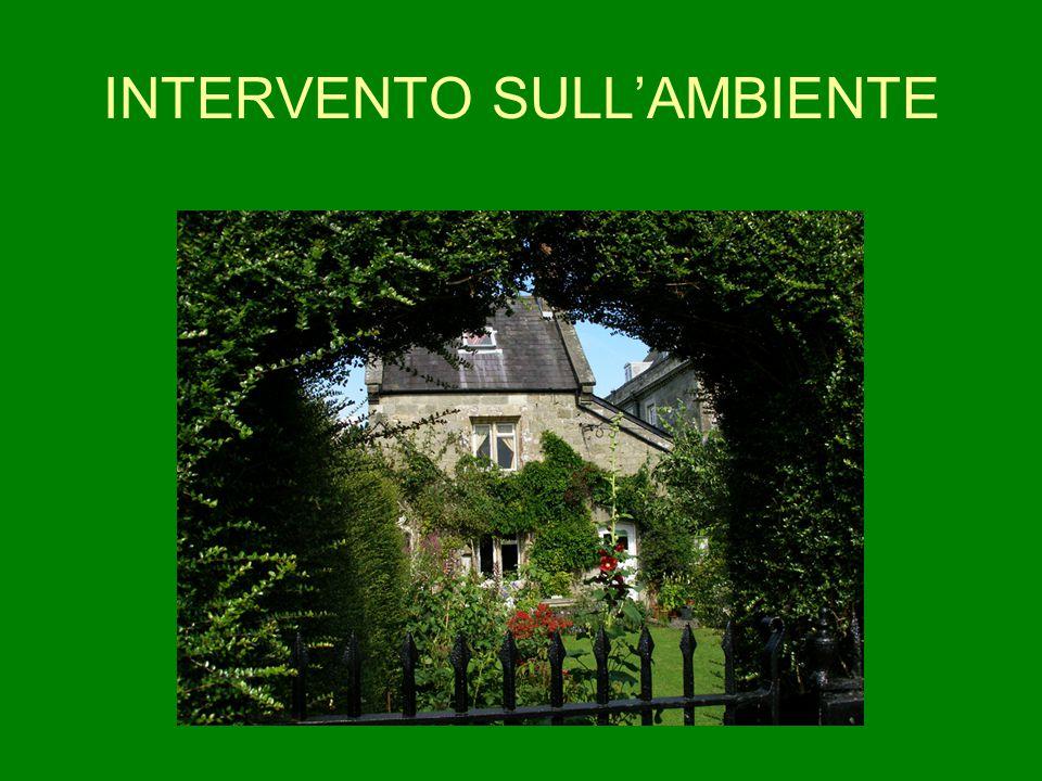 INTERVENTO SULL'AMBIENTE