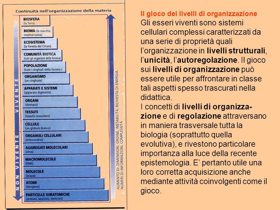 Il gioco dei livelli di organizzazione