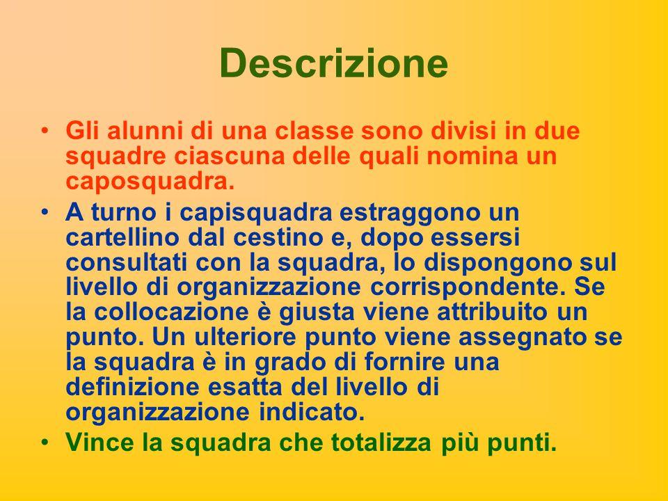 Descrizione Gli alunni di una classe sono divisi in due squadre ciascuna delle quali nomina un caposquadra.