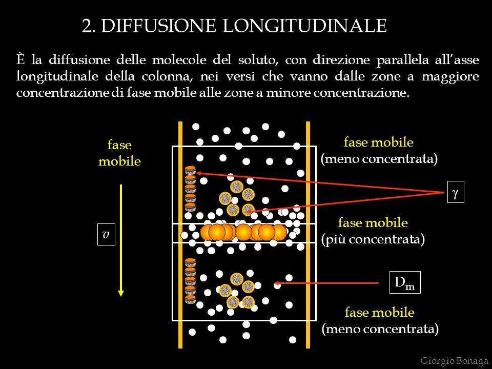 2. DIFFUSIONE LONGITUDINALE