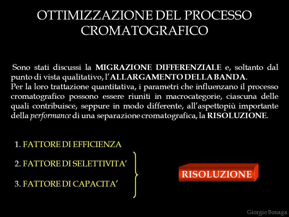 OTTIMIZZAZIONE DEL PROCESSO CROMATOGRAFICO