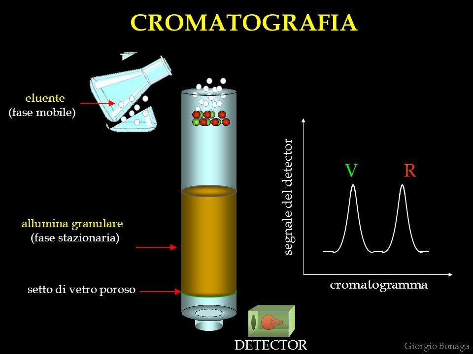 CROMATOGRAFIA V R segnale del detector cromatogramma DETECTOR eluente