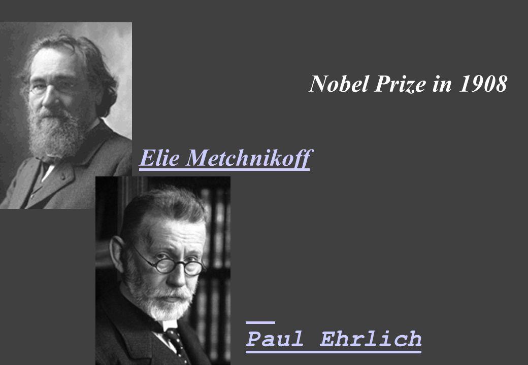Nobel Prize in 1908 Elie Metchnikoff Paul Ehrlich