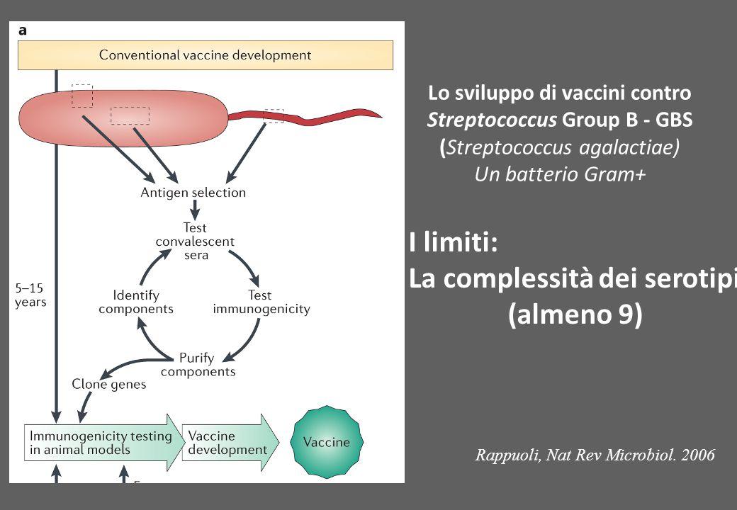 Lo sviluppo di vaccini contro Streptococcus Group B - GBS
