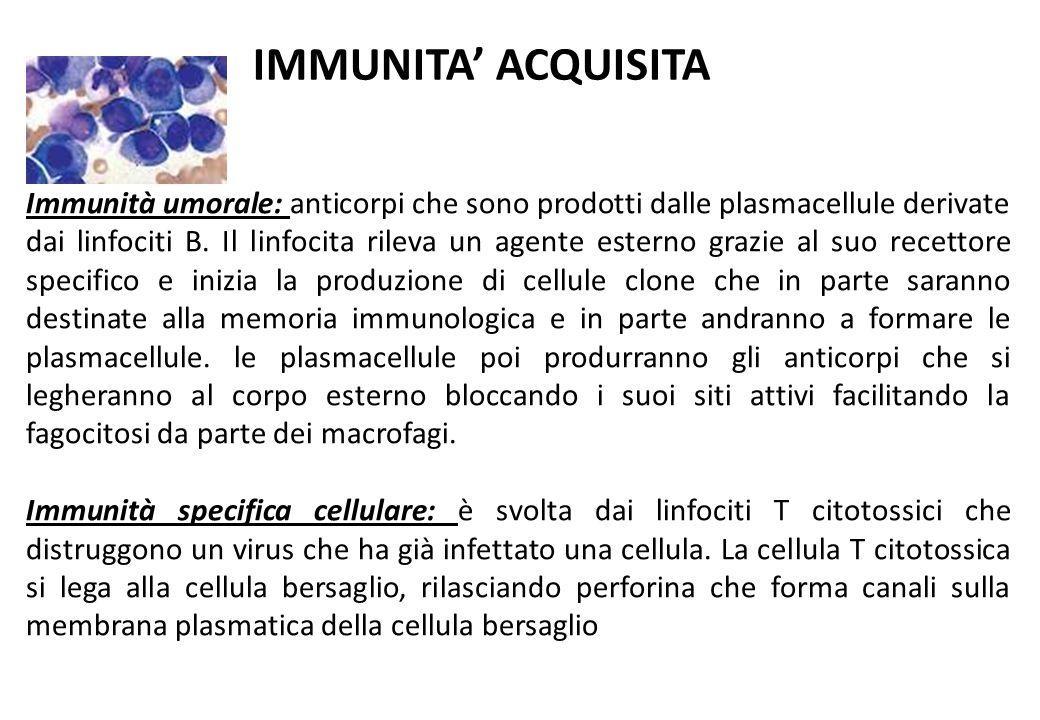 IMMUNITA' ACQUISITA