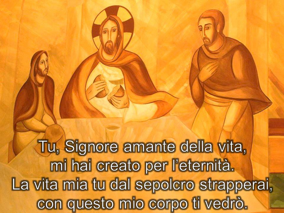 Tu, Signore amante della vita, mi hai creato per l'eternità.
