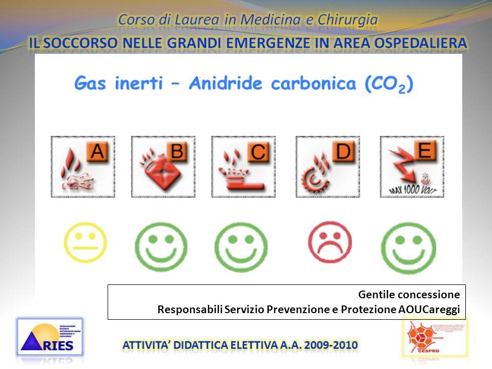 Gentile concessione Responsabili Servizio Prevenzione e Protezione AOUCareggi 20/11/09