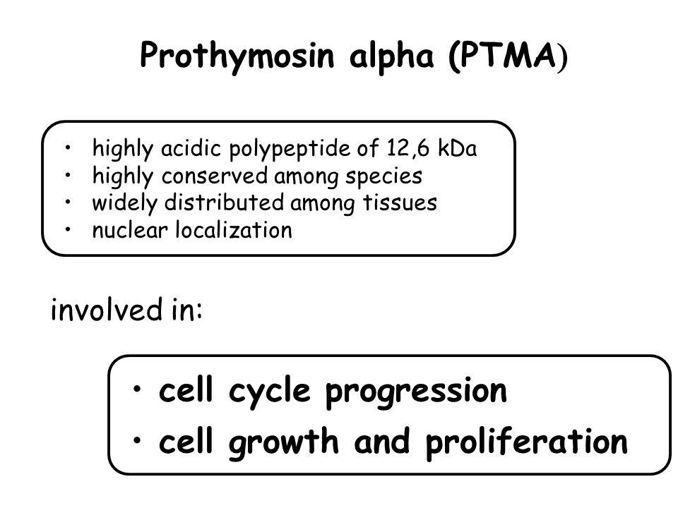 Prothymosin alpha (PTMA)