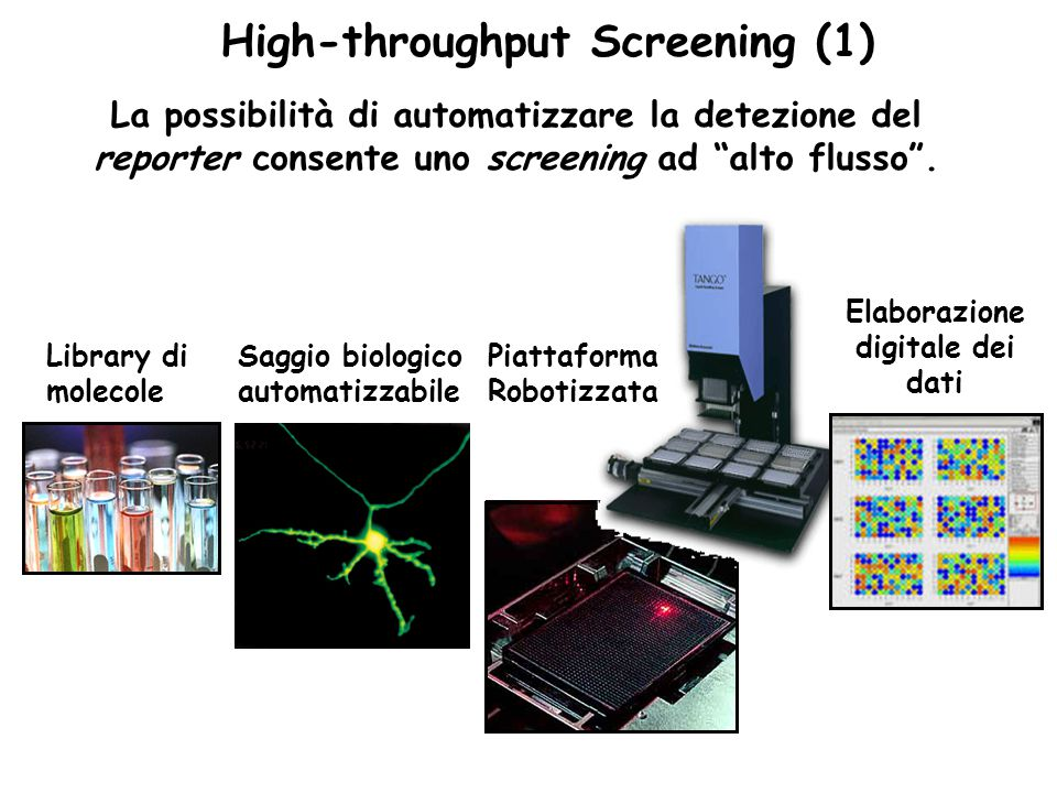 High-throughput Screening (1) Elaborazione digitale dei dati