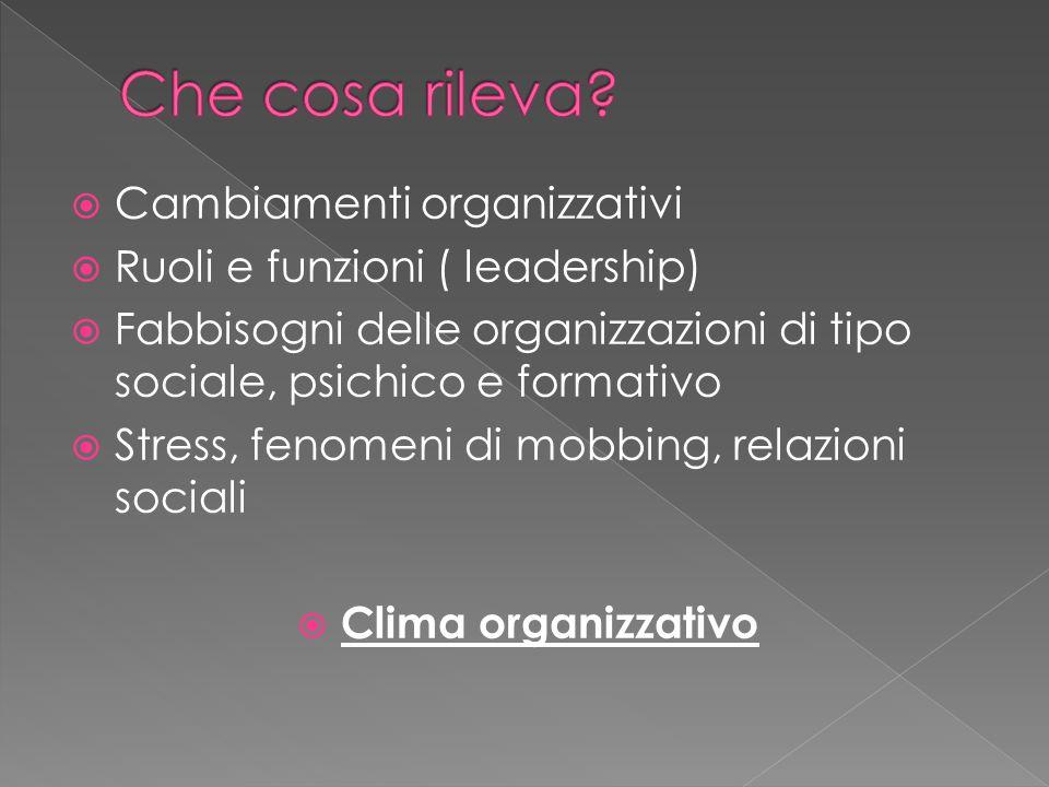 Che cosa rileva Cambiamenti organizzativi