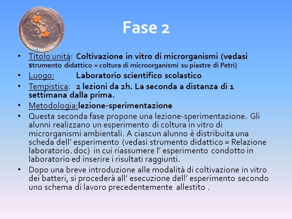 Fase 2 Titolo unità: Coltivazione in vitro di microrganismi (vedasi strumento didattico = coltura di microorganismi su piastre di Petri)