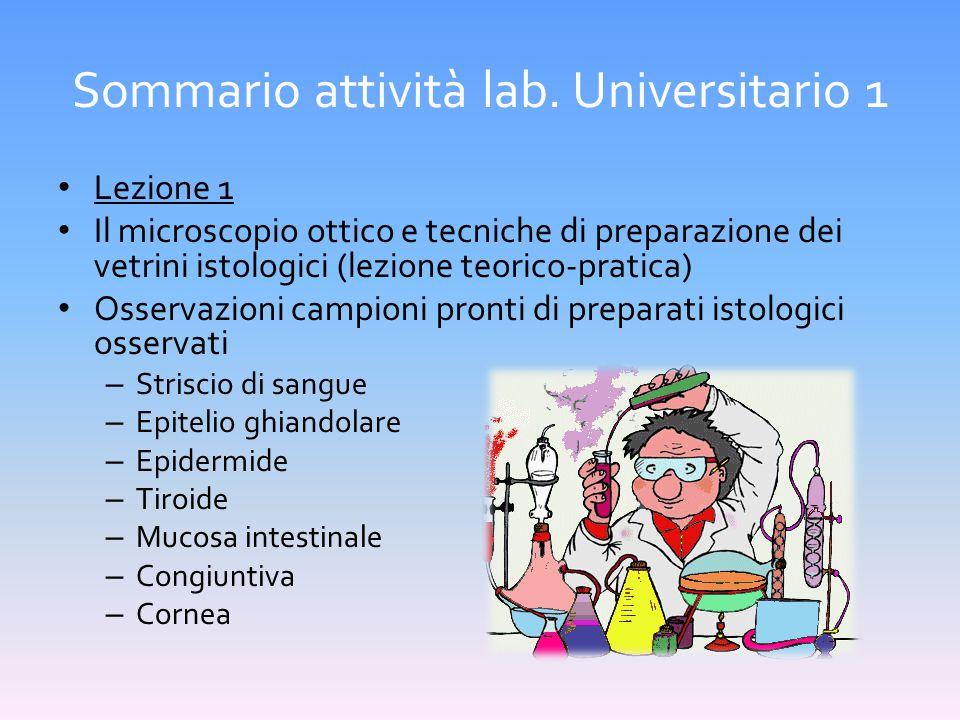 Sommario attività lab. Universitario 1