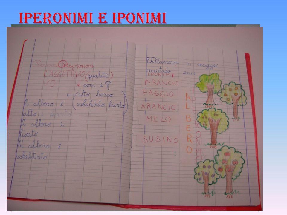 IPERONIMI E IPONIMI