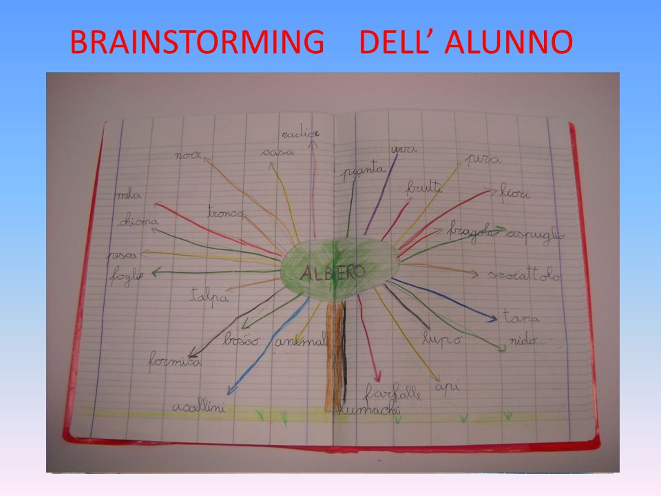 BRAINSTORMING DELL' ALUNNO