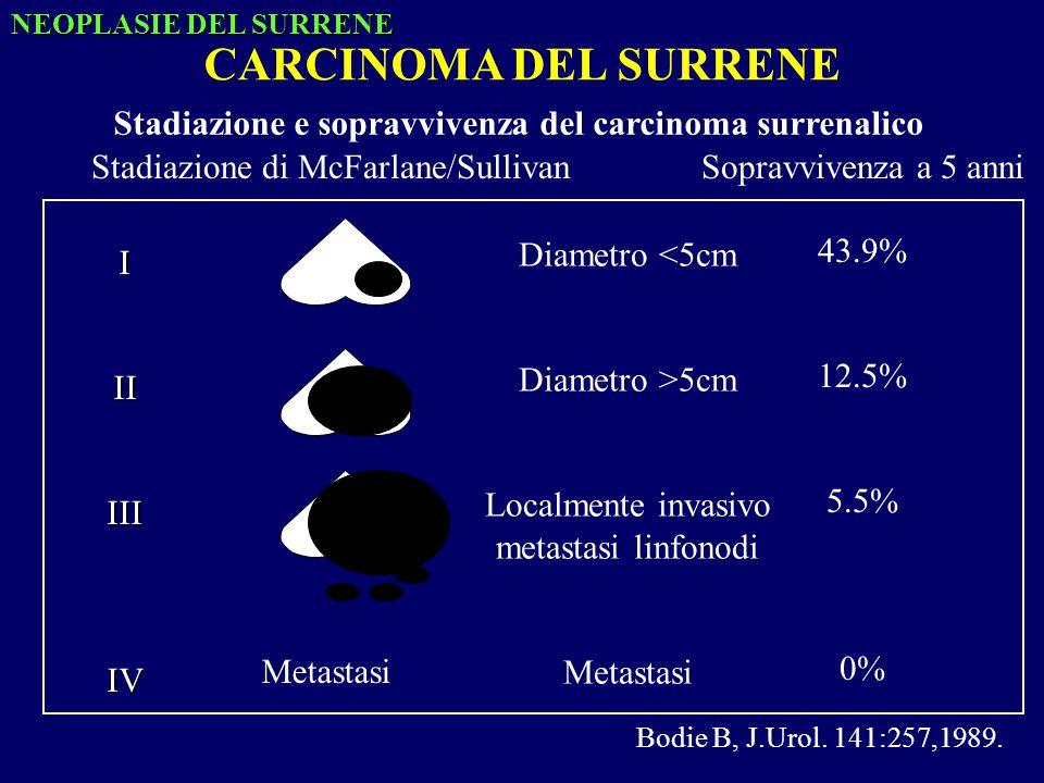 NEOPLASIE DEL SURRENE CARCINOMA DEL SURRENE. Stadiazione e sopravvivenza del carcinoma surrenalico.