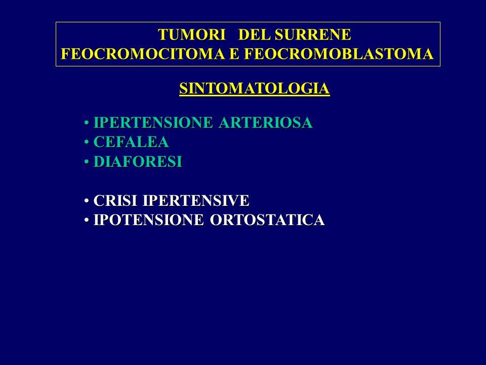 TUMORI DEL SURRENE FEOCROMOCITOMA E FEOCROMOBLASTOMA. SINTOMATOLOGIA. IPERTENSIONE ARTERIOSA. CEFALEA.
